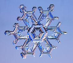 Real Snowflake Snow Crystals | Snow crystals are so perfectly symmetrical! ... Are there not some ...