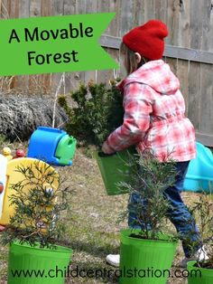 A Movable Forest | Child Central Station, A simple addition to our outdoor classroom- dwarf trees and shrubs in large pots
