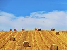 Getreide-Ernte - Strohballen zieren zur Erntezeit das Landschaftsbild im Weinviertel ... #ernte #stroh #getreide Dm Online Shop, Monument Valley, Nature, Travel, Blog, Straw Bales, Harvest Season, Grains, Landscape Pictures