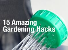 Ready to get back out into the garden? Here are 15 amazing gardening hacks to help make this year the best ever -- including: how to repel mosquitoes, flies and bees, how to grow vegetables from kitchen scraps, and how to cut your water bill in half.