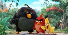 [Do Pobrania] Angry Birds Film | Dubing PL | OnlineAngry Birds Zapraszamy także na : KinomaniaTV ►Oficjalna Strona: http://kinomaniatv.pl/ ►Facebook: https://www.facebook.com/kinomaniatv/?ref=aymt_homepage_panel ►Twitter: http://www.twitter.com/TvKinomaniak ►Instagram: https://www.instagram.com/kinomaniatv/ ►YouTube: https://www.youtube.com/channel/UCKT8BKM78GZnfhzuw9aKDhg ►Imgur:  http://kinomaniatv.imgur.com