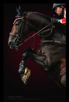 A wonderful study of a horse and rider in mid jump. (Hickstead)
