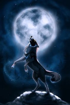Moon,male,hunter,no mate. strong loving  brother to icewind and icecloud always u pfor a howl