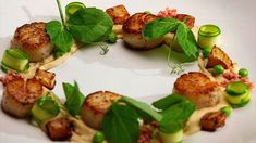 Caramalised Scallops and a Caramalised Shallot Puree with Spring Greens - Network Ten Dried Scallops, Pan Seared Scallops, Masterchef Recipes, Caramelized Shallots, Master Chef, Just Cooking, Cheese Cloth, Spring Green, Fine Dining