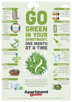 From opting out of junk mail to using non-toxic cleaning products, here's how to go green in your apartment, one month at a time!