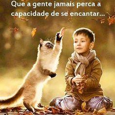 🍃🍂🍁  #gente #nao #perca #capacidade #se #encantar #psicologia #psi #insight #insightpsicologico #crianca #gato #vento #folhas #viver