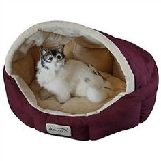 18-inch Burgundy & Beige Small Dog & Cat Bed