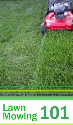 Proper mowing not only leads to an attractive lawn, but also increases the density of your grass, ensuring that it stays healthy and vibrant. Check out these simple steps to a beautiful lawn! #green #