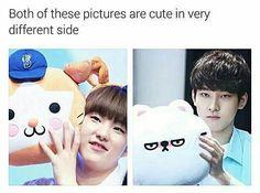 A seventeen meme book! Woozi, Jeonghan, The8, Diecisiete Memes, Funny Kpop Memes, Kid Memes, Seventeen Album, Seventeen Memes, Seventeen Wonwoo