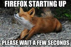 Firefox Starting Up