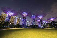 Machen Sie sich mit Lufthansa auf die Reise und entdecken Sie Singapur! In unserem Reiseführer finden Sie alles für Ihren nächsten Städtetrip.