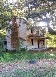Abandoned in NC Source: fuckyou_iamcat (reddit)