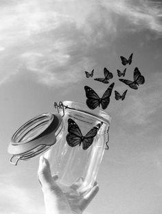 Free, sur cette image ses une photographie ou ont voit une personne qui avaitun pot remplis de papillons et qui les a libérer et l'image et en noir et blanc et les papillons sont trés noir pour démontrer la pureter.J'ai ressenti de la joie parce que les papillons démontre comme la liberté et ses quelque chose que plein de gens pourai avoir dans leur avec tou se qui arrive.