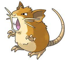 Raticate | The Definitive Ranking Of The Original 151 Pokémon