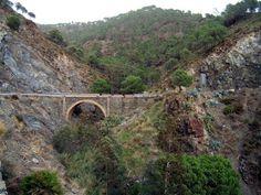 Pasoslargos.com, Senderismo y Medio Ambiente en la Serranía de Ronda