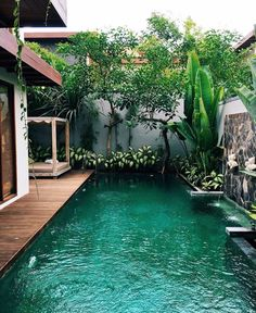 A swimming pool is one of the favorite places to refresh our mind. It is no wonder that people will seek the resort with modern and luxurious swimming pool to spend their vacation. A nice swimming pool design will require . Outdoor Pool, Outdoor Spaces, Outdoor Gardens, Outdoor Living, Indoor Outdoor, Backyard Beach, Backyard Landscaping, Landscaping Ideas, Backyard Designs