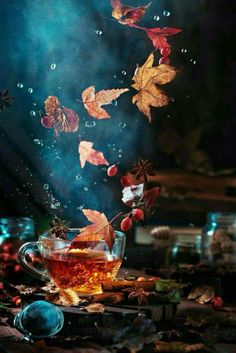 🍂 Good morning everyone 🍂 Art by Dina Belenko Fruit Photography, Autumn Photography, Still Life Photography, Creative Photography, Autumn Tea, Autumn Leaves, Autumn Rain, Wallpaper Backgrounds, Iphone Wallpaper