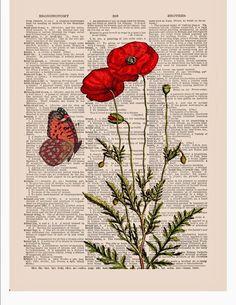 Цветочные иллюстрации на газетных страницах, маки