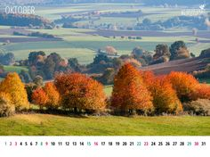 #Gratis #Wallpaper, kalenderblatt-oktober-2016-1024x768, Indian Summer in Germany, © wildpeppermint-design.de