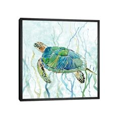 Sea Turtle Painting, Sea Turtle Art, Sea Turtles, Water Color Turtle, Baby Turtles, Turtle Swimming, Arte Sketchbook, Beach Art, Art Plastique