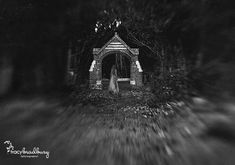 Dark, mysterious image. The Lensbaby selective focus pushes you right into the subject. Photo by Tracy Bradbury   #seeinanewway #Lensbaby