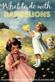 Strangers & Pilgrims on Earth: What to Do with Dandelions ~ Link Up Love