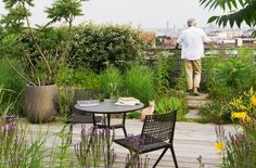 green roof garden shed Landscape Design, Garden Design, Rooftop Patio, Rooftop Gardens, Rooftop Design, Garden Architecture, Sustainable Architecture, Residential Architecture, Contemporary Architecture