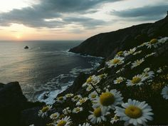 Finisterre, Spain