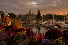Dusk on the Inner Harbour - Victoria, British Columbia