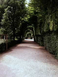 The garden at Schonbrunn Palace in Vienna