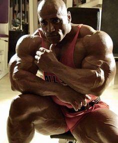 aesthetic  muscular