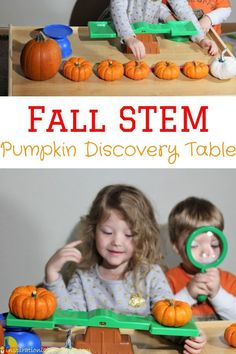 Set up a pumpkin discovery table to measure and weigh pumpkins. Such a fun fall STEM activity for toddlers and preschoolers. It's perfect for an autumn science center.