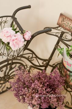 pink flowers & old bicycle
