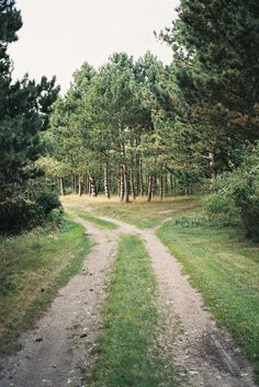 Well-trodden road in the woods. Beautiful World, Beautiful Places, Country Life, Country Roads, Fork In The Road, Foto Art, Take Me Home, The Ranch, Adventure Is Out There