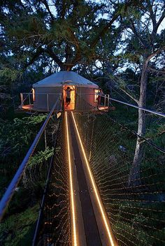 Moonlight Zipline - Cypress Valley Canopy Tours u0026 Treehouse - 30 miles from Austin Texas : canopy zipline austin - memphite.com