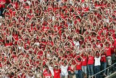 doing the wave - Bing Images College Game Days, College Fun, All American Boy, Badger Sports, Wisconsin Badgers, Lake Michigan, Green Bay, Life Is Beautiful, Waves