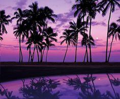 Jarabe Beach