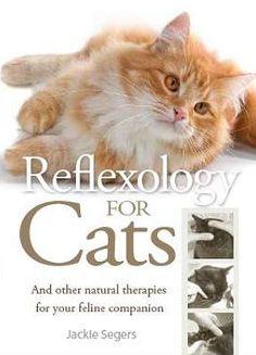 Reflexology for Cats