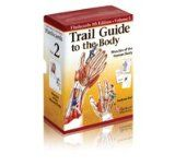 Trail Guide to the Body Flashcards, Vol. 2- These flashcards accompany Trail Guide to the Body to assist in memorization of muscle name, origin, insertion, action, and nerve innervation