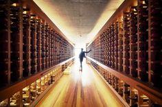 38 beste afbeeldingen van wijnkelders wine cellars cellar doors