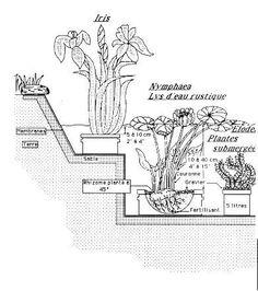 sch ma piscine naturelle piscine naturelle pinterest. Black Bedroom Furniture Sets. Home Design Ideas