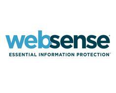 ONE: En el Buen Fin, ¿cómo protegerse de los fraudes en línea?