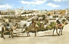 Bethlehem - بيت لحم : Bethlehem, 1890s 13