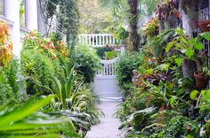 Garden Path - Charleston SC - photography by www.rkirby.com