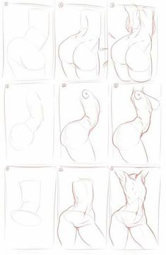 ✨Bases sensuales 7u7 pa' dibujar✨ - ✨tips pa dibujar #3 ✨ - Wattpad