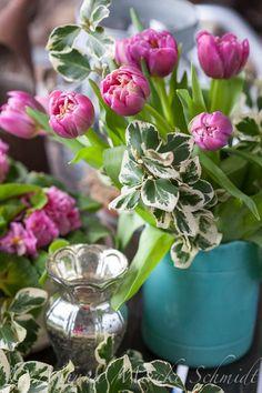 Blomsterverkstad: 7 x tulpanfrossa
