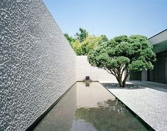 Get the best around the pool landscaping Courtyard Design, Patio Design, Exterior Design, Garden Design, Minimalist Architecture, Landscape Architecture, Landscape Design, Outdoor Landscaping, Outdoor Gardens