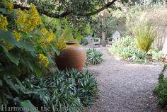 Texture reigns supreme in the Testa-Vought garden — Gossip in the Garden