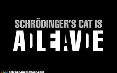Love those... Schrodingers cat reminds me of big bang theory