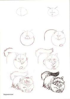 как рисовать кошку карандашом: 10 тыс изображений найдено в Яндекс.Картинках